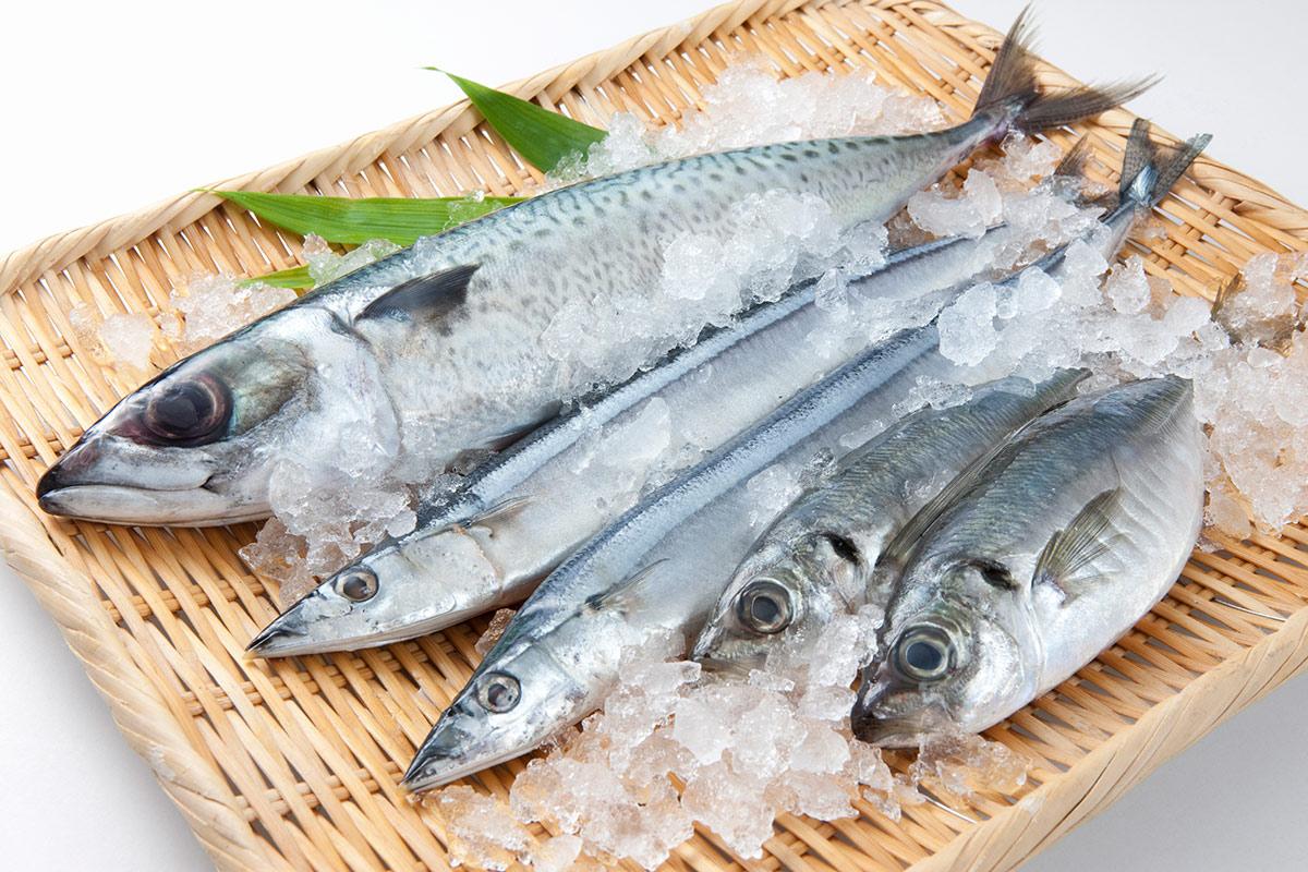 「魚」が最高においしいと思う都道府県はどこ?【アンケート実施中】 | ねとらぼ調査隊