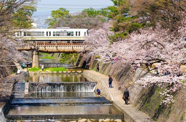 第1位:兵庫県西宮市(画像は「写真AC」より)