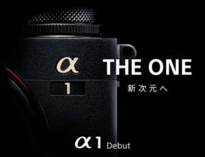 【フルサイズミラーレス一眼カメラ】のメーカー人気ランキングTOP6! 1位に輝いたのは「SONY」! 【2021年最新投票結果】