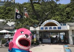 「水族館」人気ランキングTOP50! 第1位は「桂浜水族館」に決定!【2021年最新投票結果】