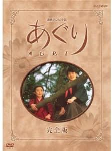【NHK連続テレビ小説】「90年代の朝ドラ」人気ランキングTOP18! 1位は「あぐり」【2021年最新調査結果】