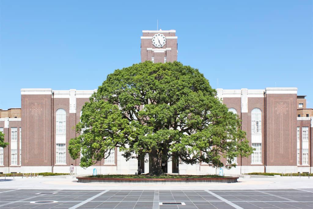 画像は「京都大学」公式サイトより引用