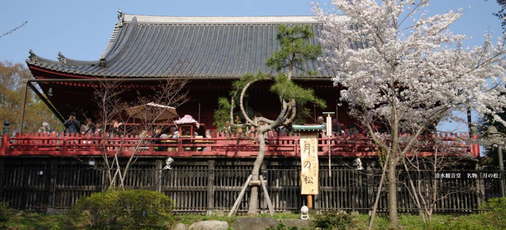 画像は「東叡山 寛永寺」公式ホームページより引用