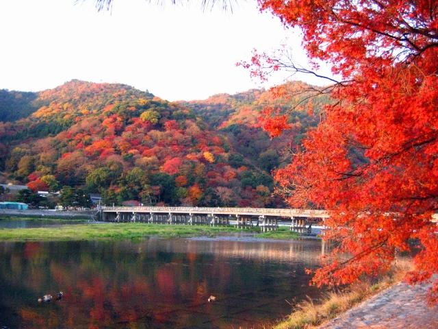 「紅葉が美しい都道府県」はどこ? 人気の3エリアをピックアップ! | ねとらぼ調査隊