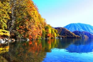 【紅葉が美しい都道府県】人気ランキングで第1位は「栃木県」【2021年調査結果】